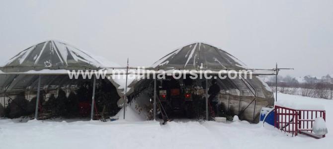 Snježne radosti u našim plastenicima;-)!